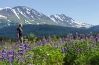 Chugach-National Forest