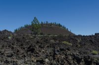 Lava Butte, Bend
