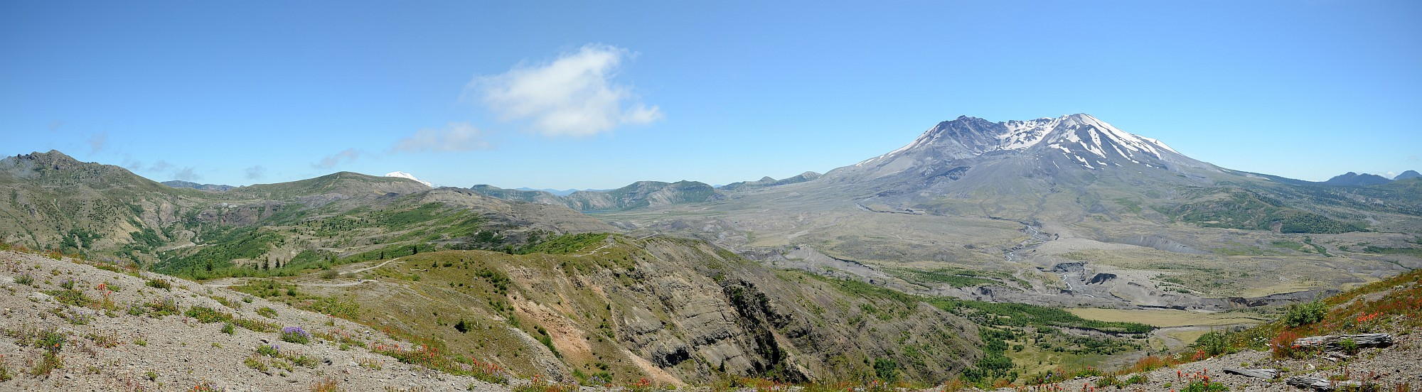 Mt. St. Helens Panorama