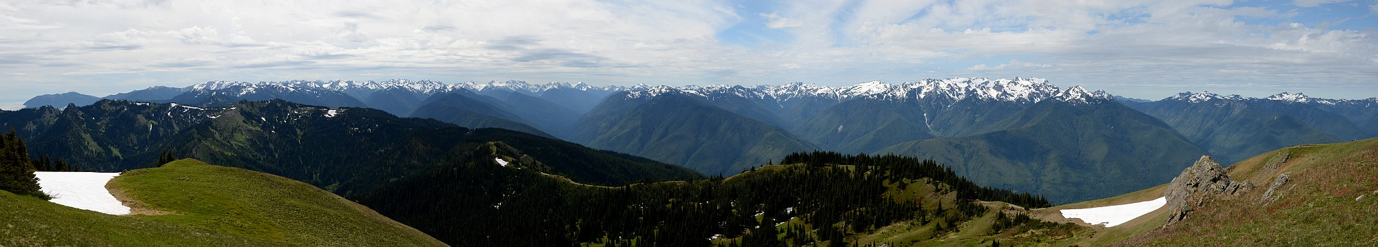 Hurricare ridge Panorama