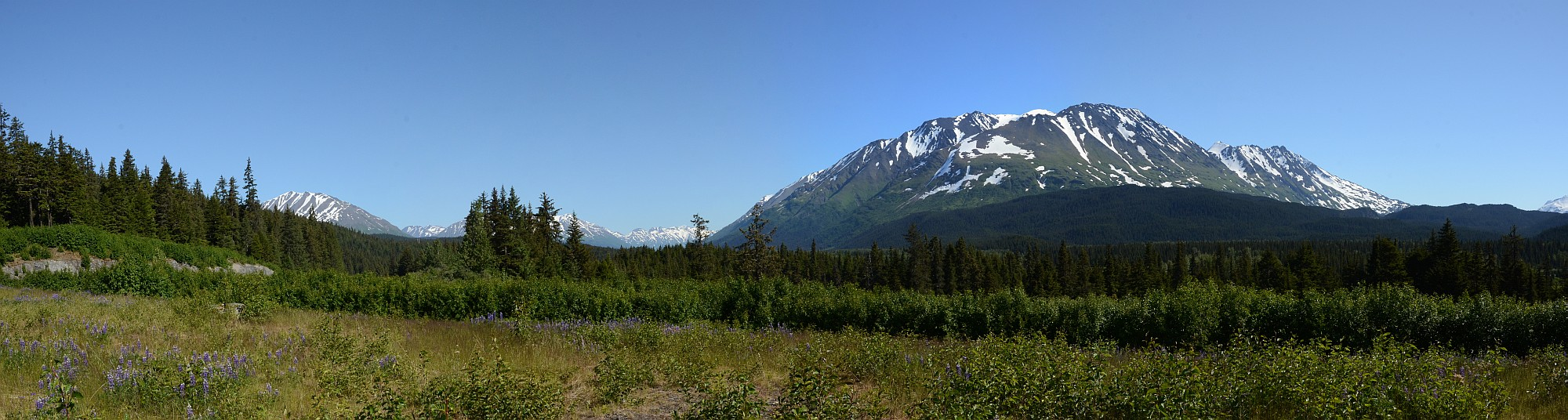 Chugach-National Forest Panorama
